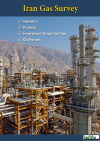 Iran Gas Survey 2013